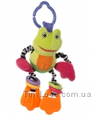 Маленький Лягушонок (Baby Frog)